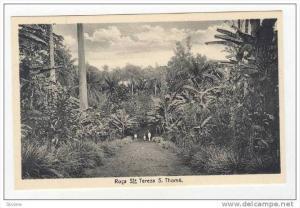 Roca Sta Tereza, S. Thome, 1910s