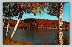Ontario- Canada, Algonquin Provincial Park, Oxtongue Lake Bridge,Chrome Postcard