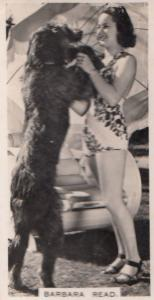 Barbara Read & Dog Hollywood Actress Rare Real Photo Cigarette Card