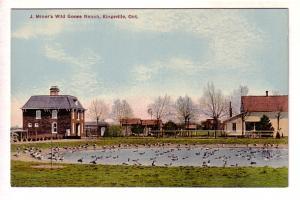 J Miner's Wild Goose Ranch, Kingsville, Ontario,