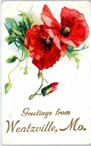 WENTZVILLE, MO Missouri   GREETINGS FROM with FLOWERS  c1910s   Postcard