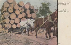 EAST KOOTENAY , B.C., Canada, 00-10s ; Logging