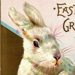 Gorgeous brrown and white rabbits Easter egg forget-mee-nots embossed