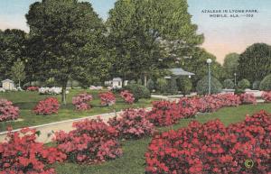MOBILE , Alabama , 30-40s ; Azaleas in Lyons Park