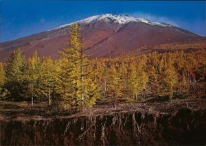 Mt. Fiji autumn tinted larch trees Okuniwa Japan