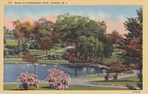 Scene In Cadwalader Park Trenton New Jersey