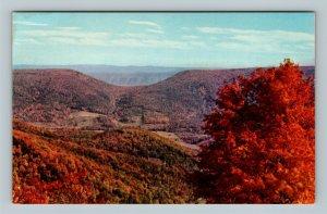 Scenic Autumn View Saddle Allegheny Mountains Chrome West Virginia Postcard