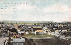 Centralia Washington~Sectional View~Downtown~Mostly Homes~Back Yards~c1912 PC