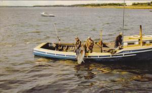 Tuna Fishing, WEDGEPORT, Nova Scotia, Canada, 40-60´