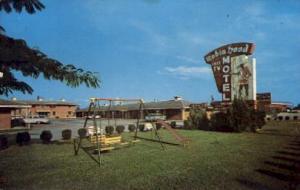 Robin Hood Motel Jonesboro GA 1967