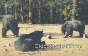 Rockies USA Bear Unused