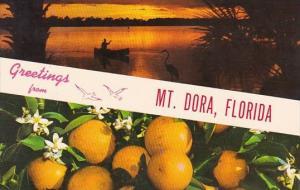 Florida Mount Dora Greetings From Mount Dora