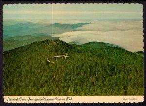 Clingman's Dome,Great Smokey Mountains National Park BIN