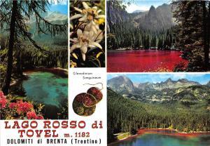 B84596 trentino lago rosso di tovel dolomiti di brenta  italy