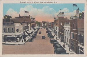 SKOWHEGAN Maine - AERIAL BIRDSEYE VIEW of town 1910s / Leighton