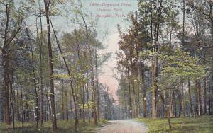 Dogwood Drive, Overton Park, MEMPHIS, Tennessee, PU-1909