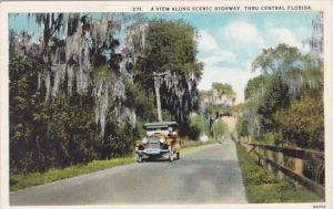 Florida Thru Central Florida A View Along Scenic Highway