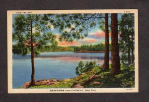 NY Greetings From Catskill Mtn Mtns Lake Mountains New York Postcard Linen PC