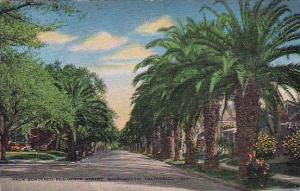 Palm Bordered Residence Street Sacramento California