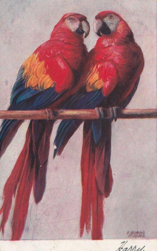 2 Parrots , 1907
