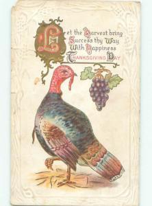 Pre-Linen Thanksgiving TURKEY BIRD WITH GRAPES AB4313