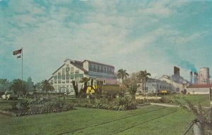 CLEWISTON , Florida, 1960s; Largest Raw Sugar Mill in continental United States