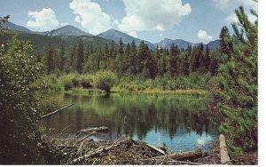 US    PC3987 GLACIER CREEK, ROCKY MOUNTAIN NATIONAL PARK, COLORADO