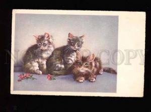 001884 Fluffy KITTIES w/ Green Eyes Vintage color PC