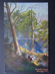 Australia Series BURNING OFF Artist P. Campbell c1904 by Art Series
