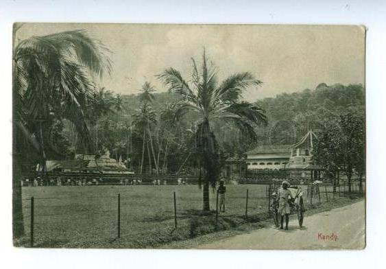 133020 CEYLON KANDY Rickshaw on road Vintage PC