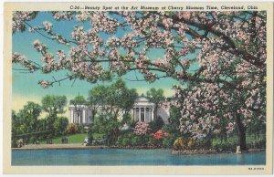 Art Museum Built 1916 Cherry Blossom Time Cleveland Ohio
