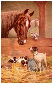 Dog , with Puppies, Horses in Stalls