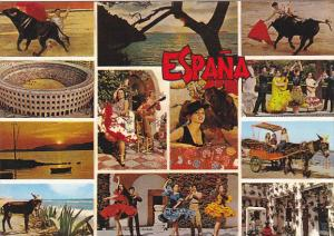 Spain Tipica Multi View Bull Fight