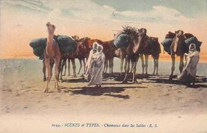 Arab Men & Camels , Chameaux dans les Sables , 00-10s
