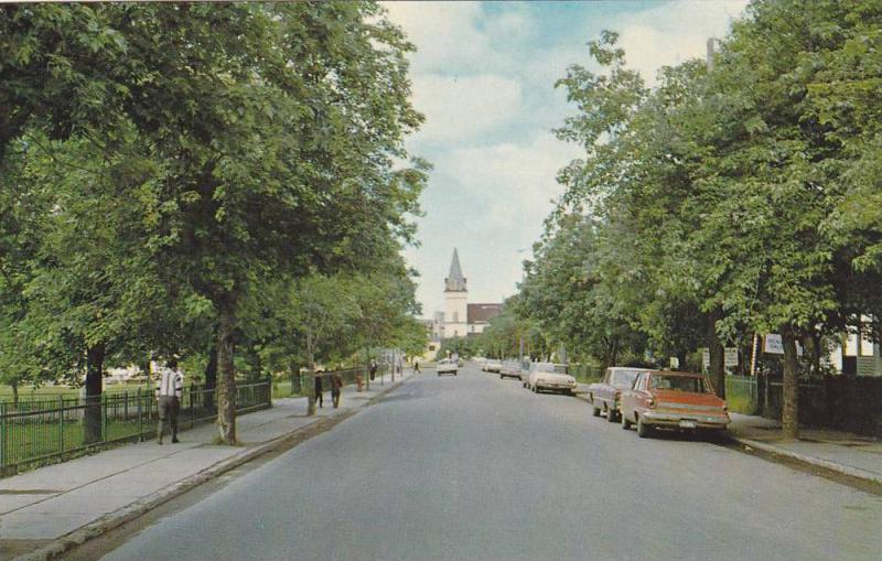 Typical Street Scene In Corner Brook, Corner Brook, Newfoundland, Canada, 194...