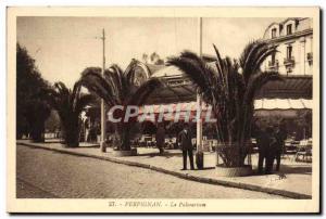 Old Postcard Perpignan Le Palmarium