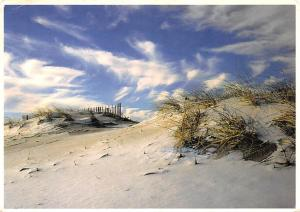 Cape Cod National Seashore -