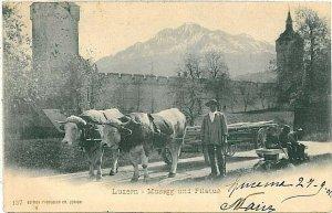 Ansichtskarten Schweiz VINTAGE POSTCARD: SWITZERLAND - LUZERN 1901 - CART ETHNIC