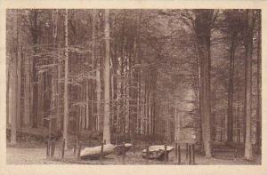 Belgium Tervuren Le Parc Les Pierres druidiques 1925