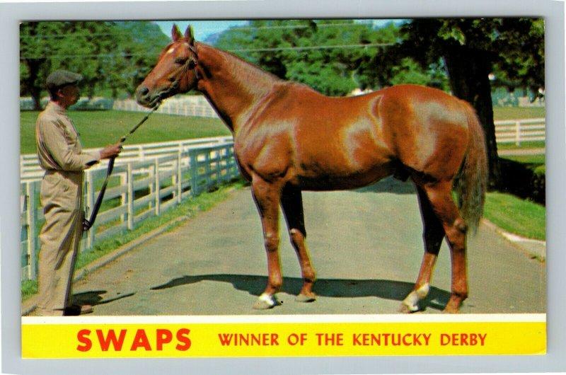 Lexington KY-Kentucky, Swaps, Winner Of Kentucky Derby, Farm, Chrome Postcard