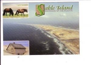 Horses, Sable Island, Nova Scotia, Graveyard of the Atlantic