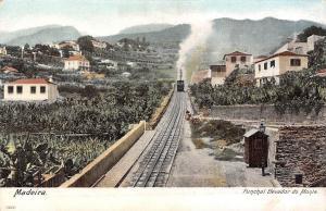 Portugal Madeira Funchal Elevador do Monte