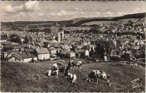 CPA PONTARLIER - Les Paturages et la Ville (131351)