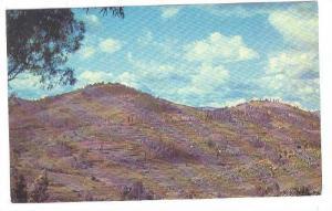 Le Pays aus mille collines porte bien nom, Rwanda, 40-60s