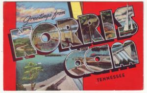 P527 JLs 1951 large letter greetings norris dam tennessee scene