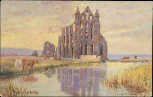 The Abbey Whitby UK TUCK postcar