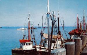 Fishing Boats, CAPE COD, Massachusetts, 40-60´s