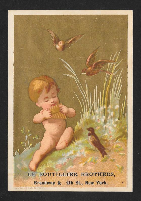 VICTORIAN TRADE CARD Boutillier Family Clothes Baby & Birds