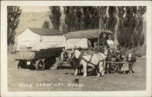 Yellowstone Pete Stagecoach Mule Train 510 Model Real Photo Postcard