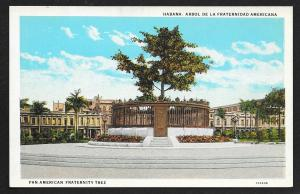 Plaza View PanAmerican Fraternity Tree Havana CUBA Unused c1920s